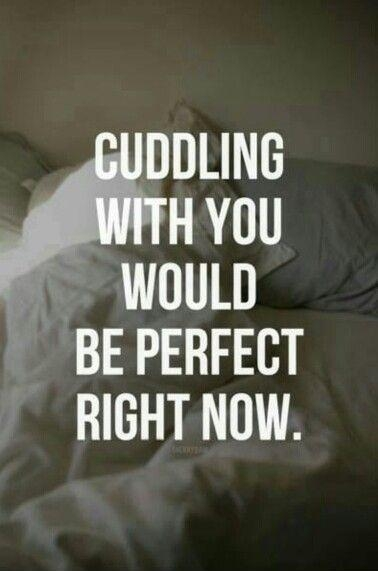 cuddle quotes cuddle sayings cuddle picture quotes