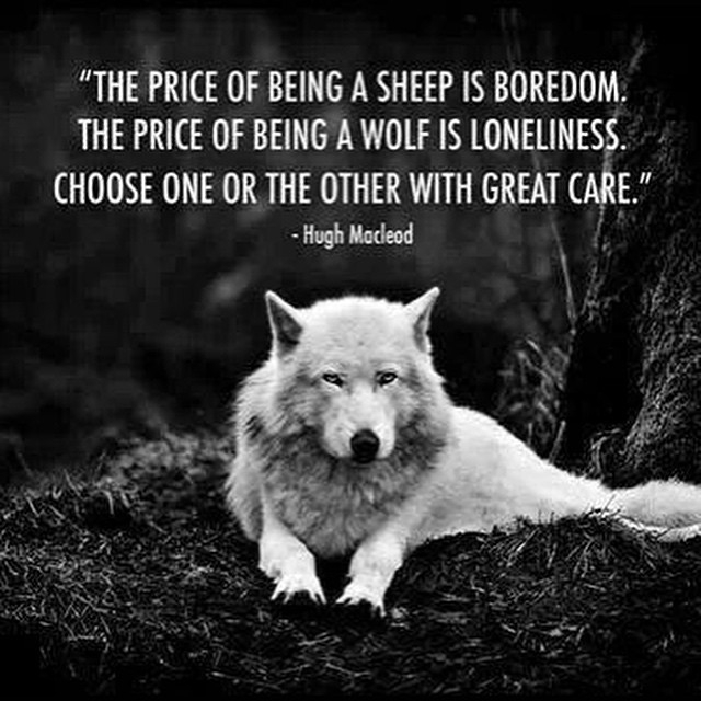 lone wolf love this great quote im wolfy all the way
