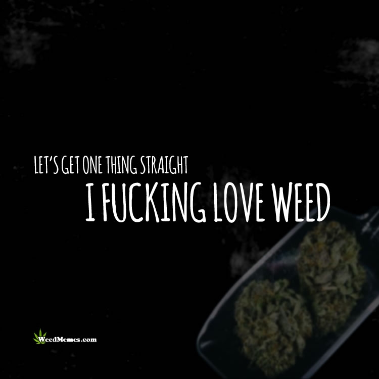 one thing straight i fking love weed stoner quotes
