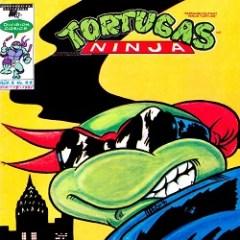 Echando la concha: Tortugas a la mexicana