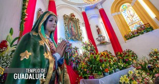 altar virgen de guadalupe