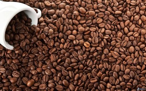 acheter cafe grain