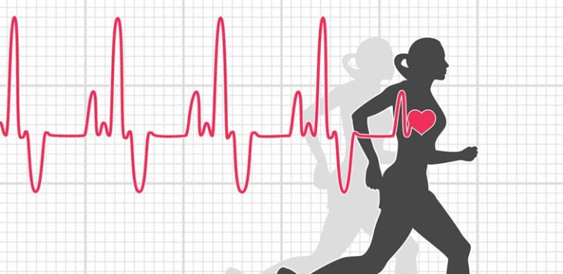 """Résultat de recherche d'images pour """"fréquence cardiaque"""""""