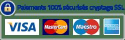 Paiements 100% sécurisés par Stripe