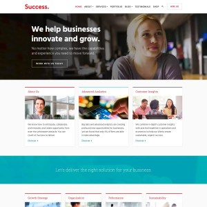 Success WordPress Theme
