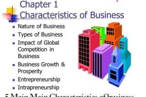 5 Main Main Characteristics of business