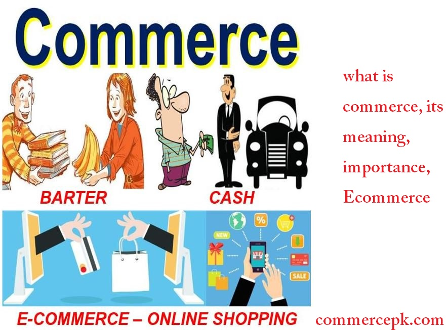 Define what is Commerce Meaning and Importance 2017