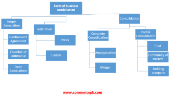 what is business combination and its types