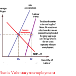 What is Voluntary unemployment