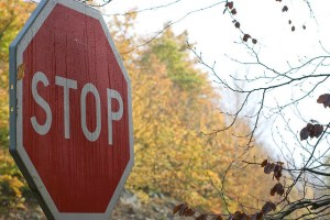 director disqualified stop sign