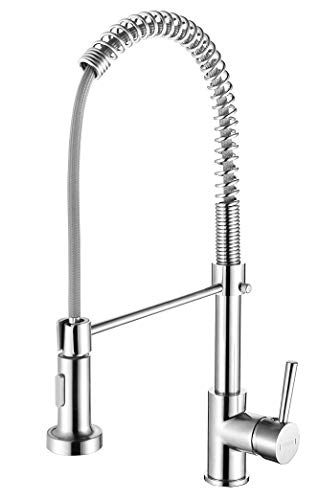 Kitchen Faucet With Pull Down Sprayer, Commercial Single
