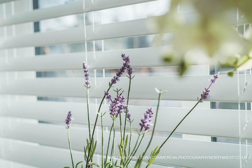 lavender on window ledge in sunlight