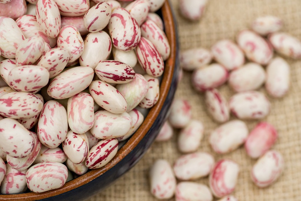 stock photo of uncooked borlotti beans in blue bowl