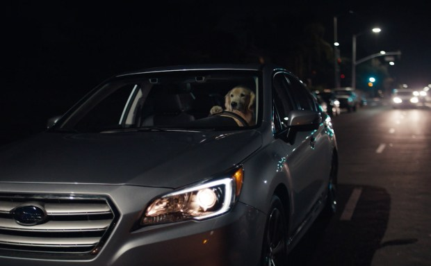 Puppy | Subaru Commercial Song