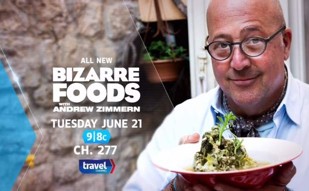 Bizarre Foods with Andrew Zimmern TV Spot Song