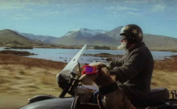 Doggie Side Car | Cadbury Commercial Song