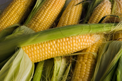 Corn. slicgroup,Commodities Trading,bauxite,alumina,aluminium, zinc,copper,lead,ferroalloys,nickel,cobalt,iron ore,wheat, corn,barley,rice,oilseeds,meals,edible oils,biodiesel,cotton,sugar,crude oil,oil products,steam coal,metallurgical coal,coke,Financial Instruments,Medium Term Notes(MTNs),Bank Guarantees(BGs),Certificate of Deposits(CDs),Bank Bonds,Bank Drafts,Zero Coupons,Standby Letter of Credits(SBLCs),Private Placement Program(PPP),Treasury Strips(T-Strips),Treasury Notes,Currency
