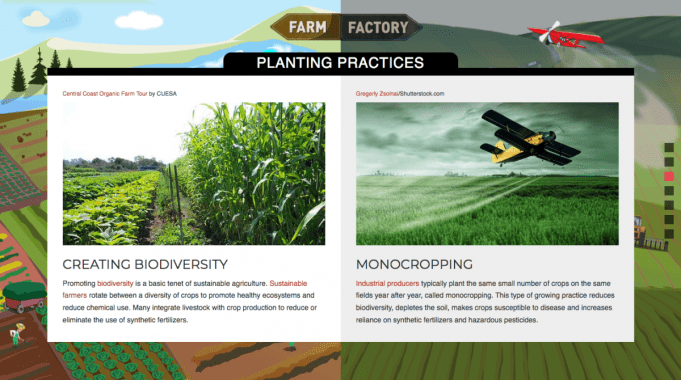 planting practices