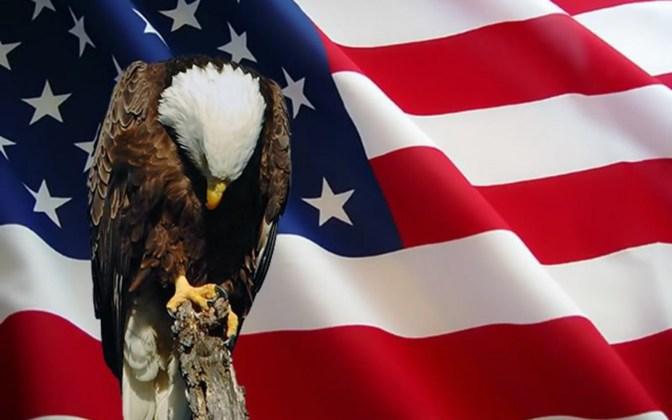 Eagle Praying For America