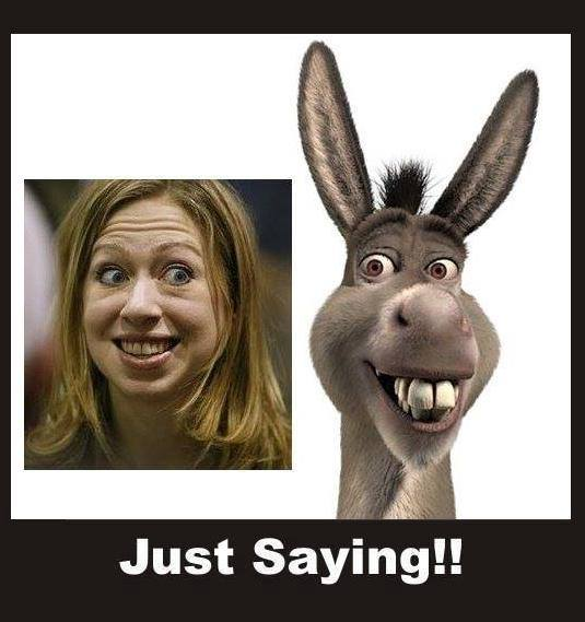 Look Alike Of The Day: Chelsea Clinton And Donkey (Shrek)