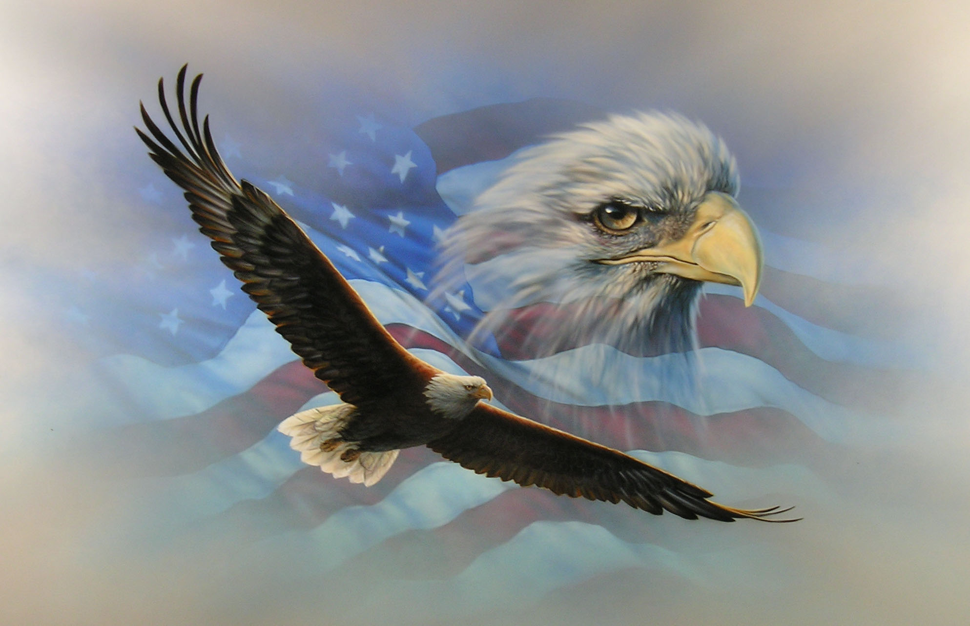wallpaper of the day: american flag eagle - common sense evaluation
