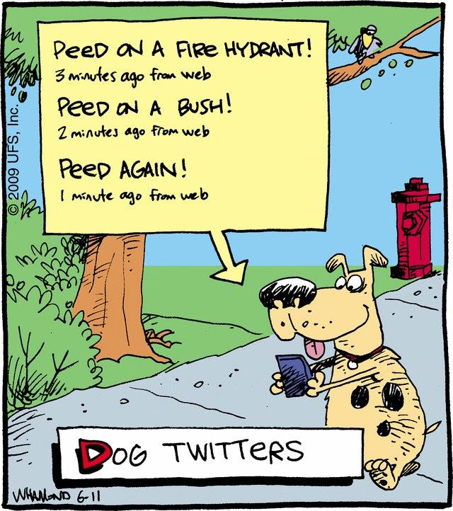 dog-tweets