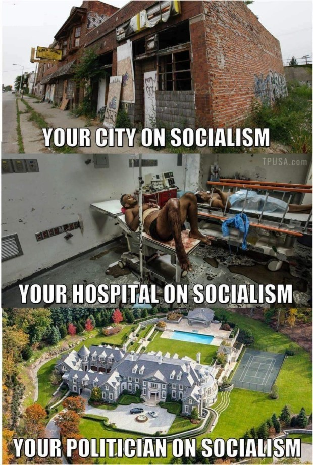why-politicians-like-socialism