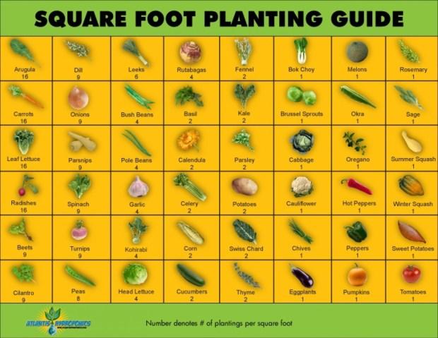 square-foot-gardening-planner