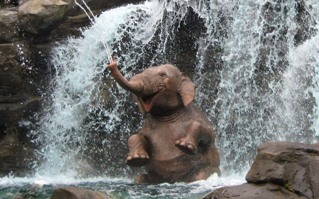 Picture Of The Day: Happy Elephant