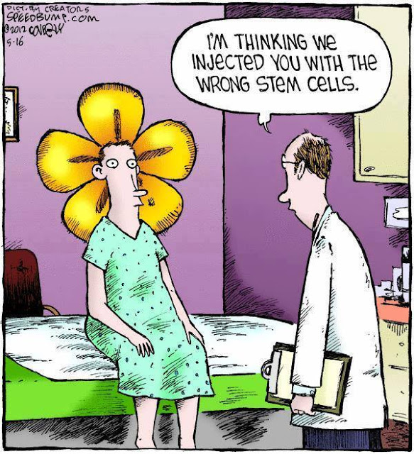 Wrong Stem Cells