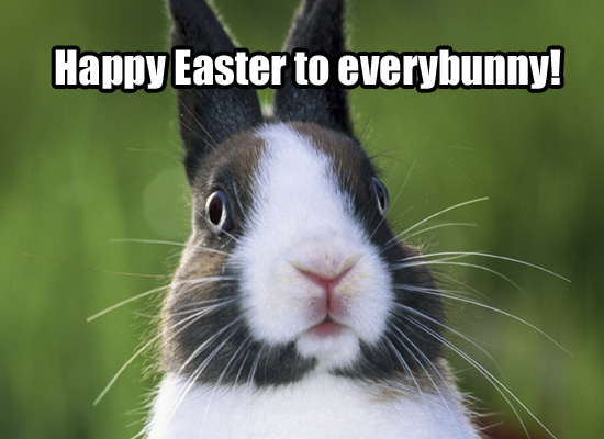 Picture Of The Day: Happy Easter