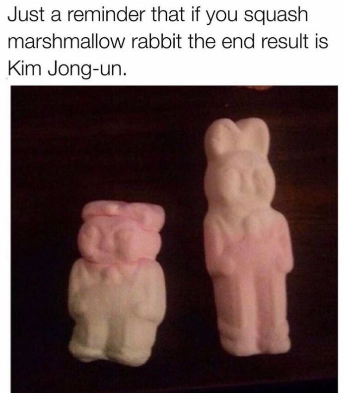 Picture Of The Day: Marshmallow Rabbit