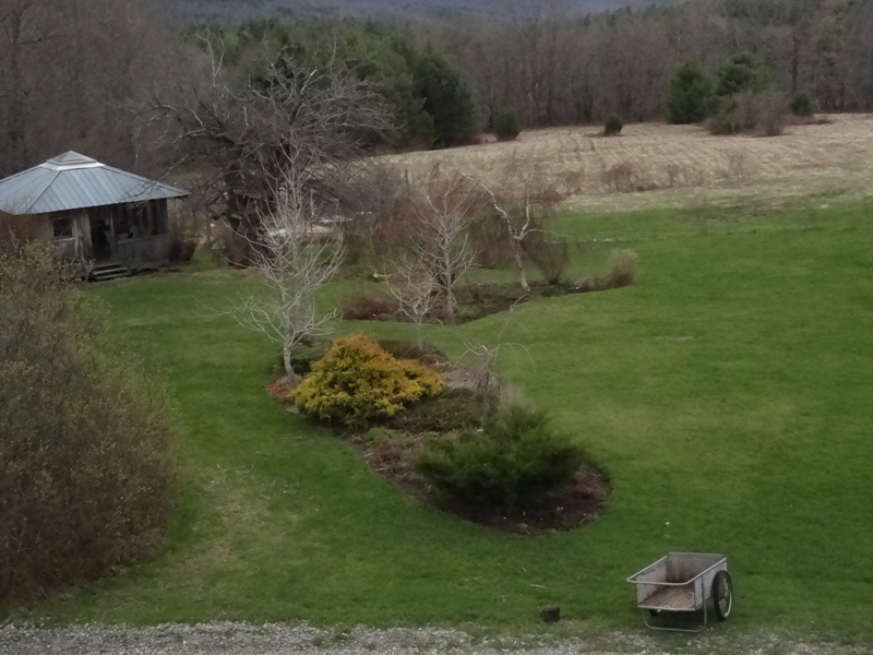 View from the Bedroom window May 5, 2014