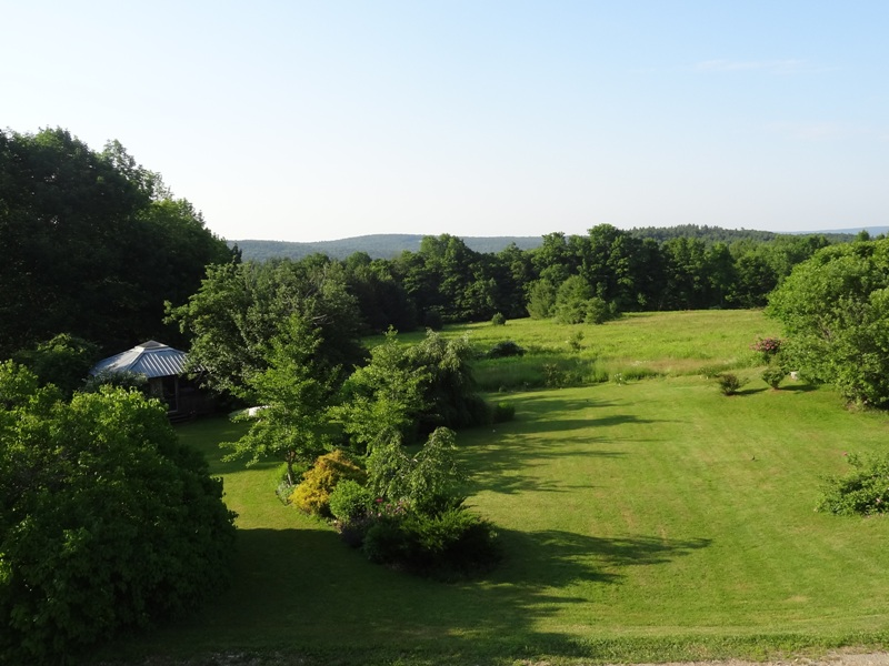 View from the Bedroom Window July 1, 2014
