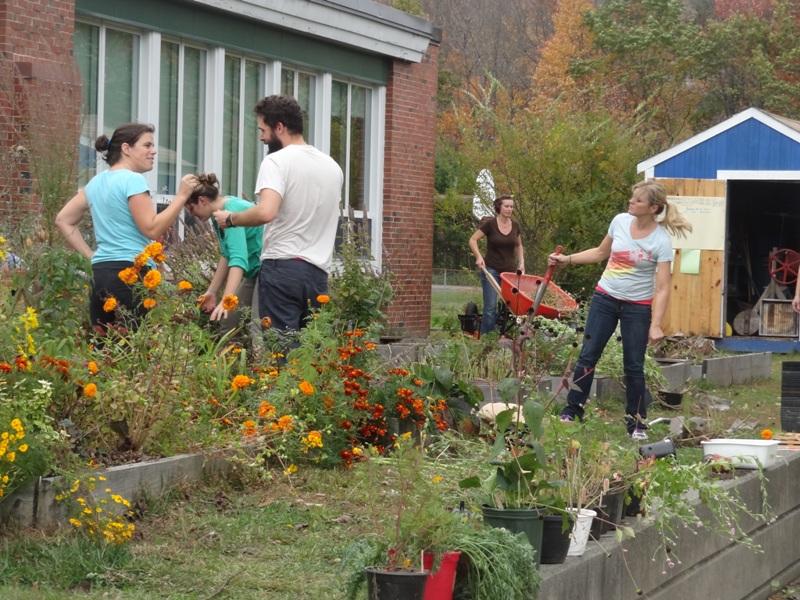 Discovery School Garden