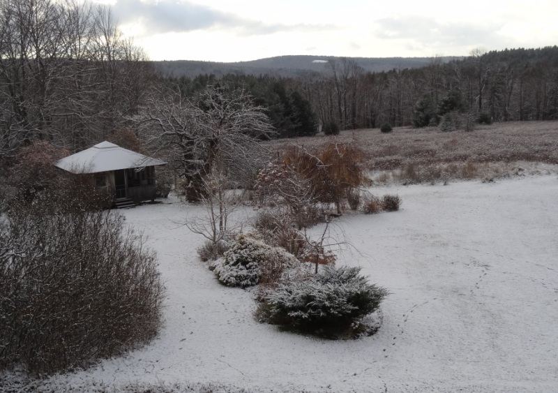 View from the bedroom window - our first snow