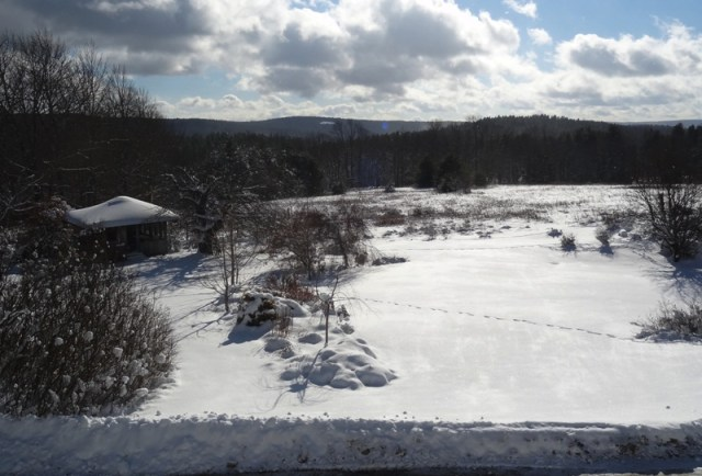 November 28, 2014 after the snowstorm