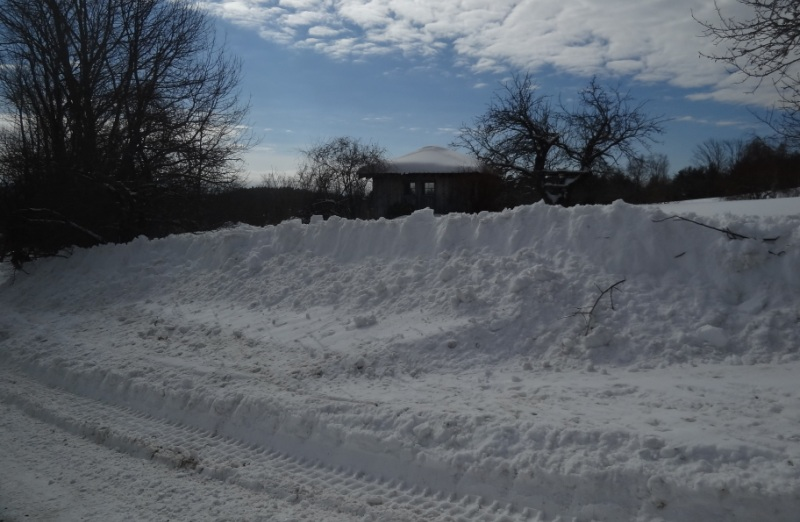 Plowed Snowbank February 10, 2015