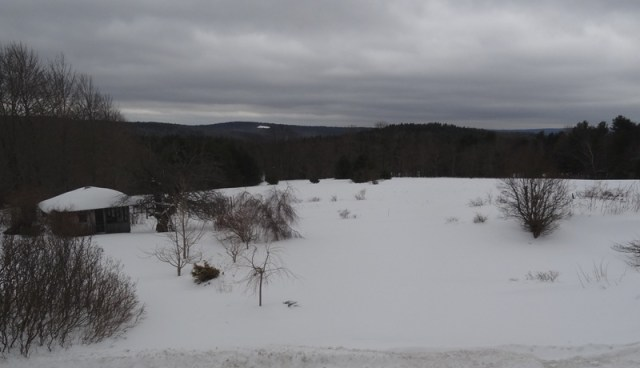 View from the Bedroom Window  March 4, 2015