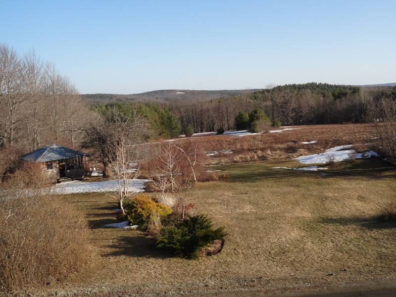 View from the bedroom window April 12, 2014