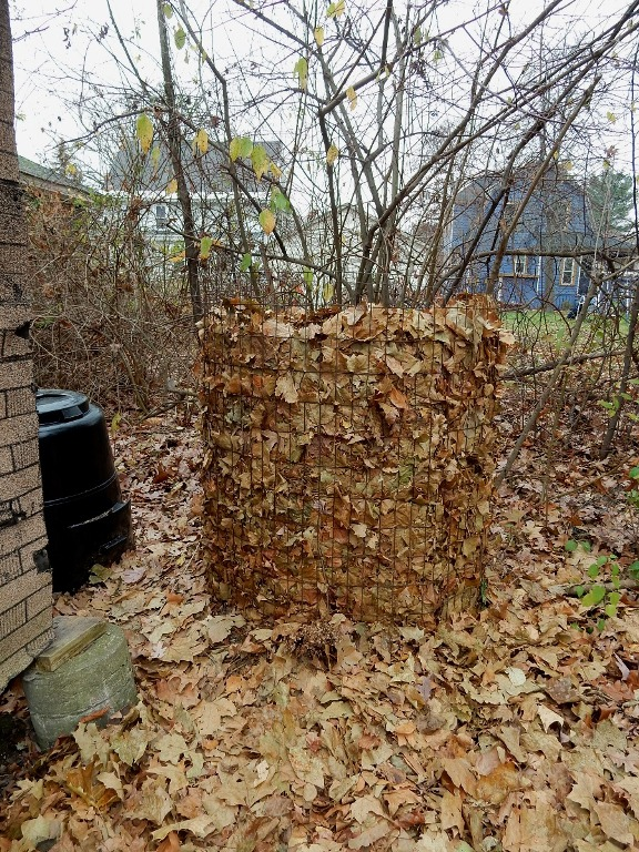Cold compost pile
