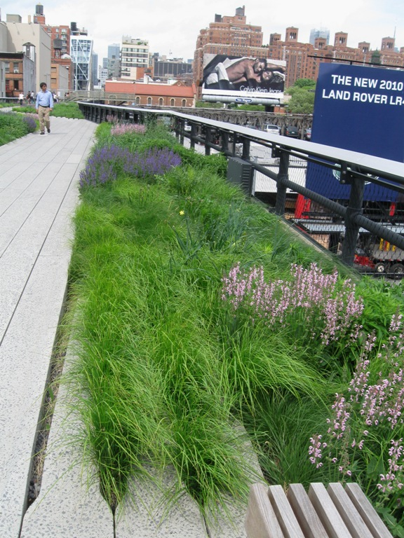 High Line Garden in NYC