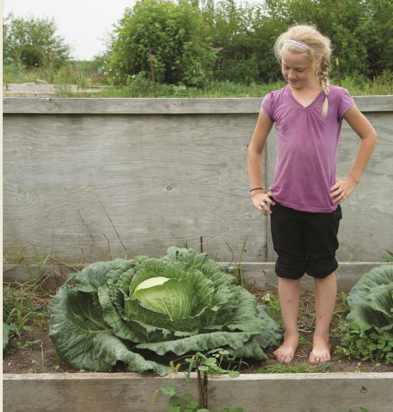 Girl with her giant cabbage