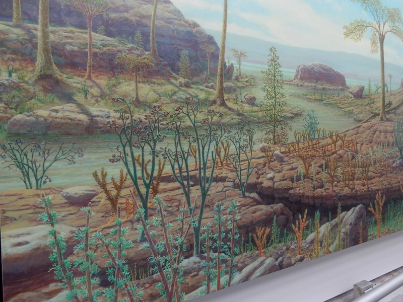 Rise of Land Flora