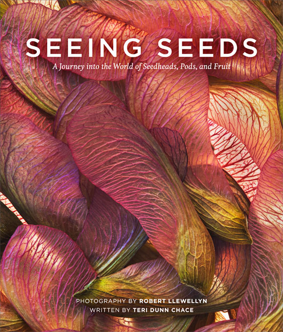 Seeing Seeds by Llewellyn and Chace