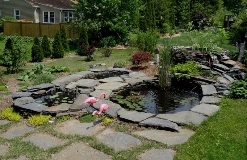 Paul Redstone's water gardens