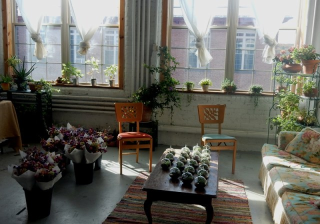 Wild Rose Flower Farm studio