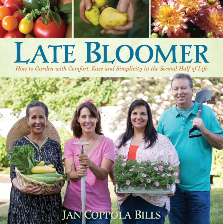 Late Bloomer by Jan Bills