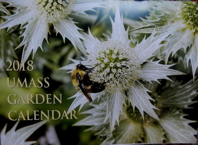UMass Garden Calendar