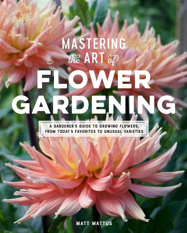 Mastering the Art of Flower Gardening